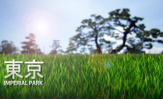 Tokyo imperial park