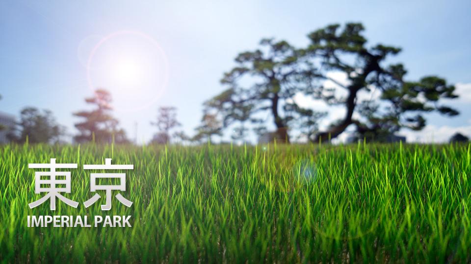 Blender grass -Tokyo imperial park