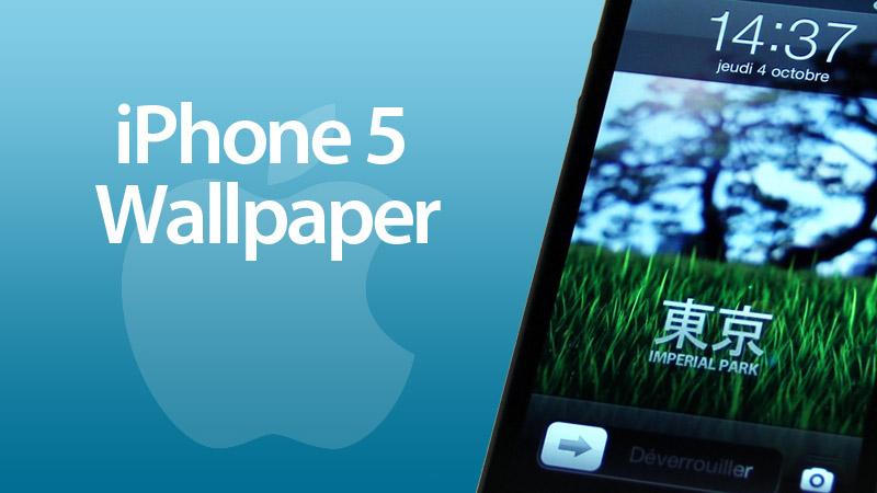 Blender Blog Iphone 5 Wallpaper Blender 3d Video Tutorials And